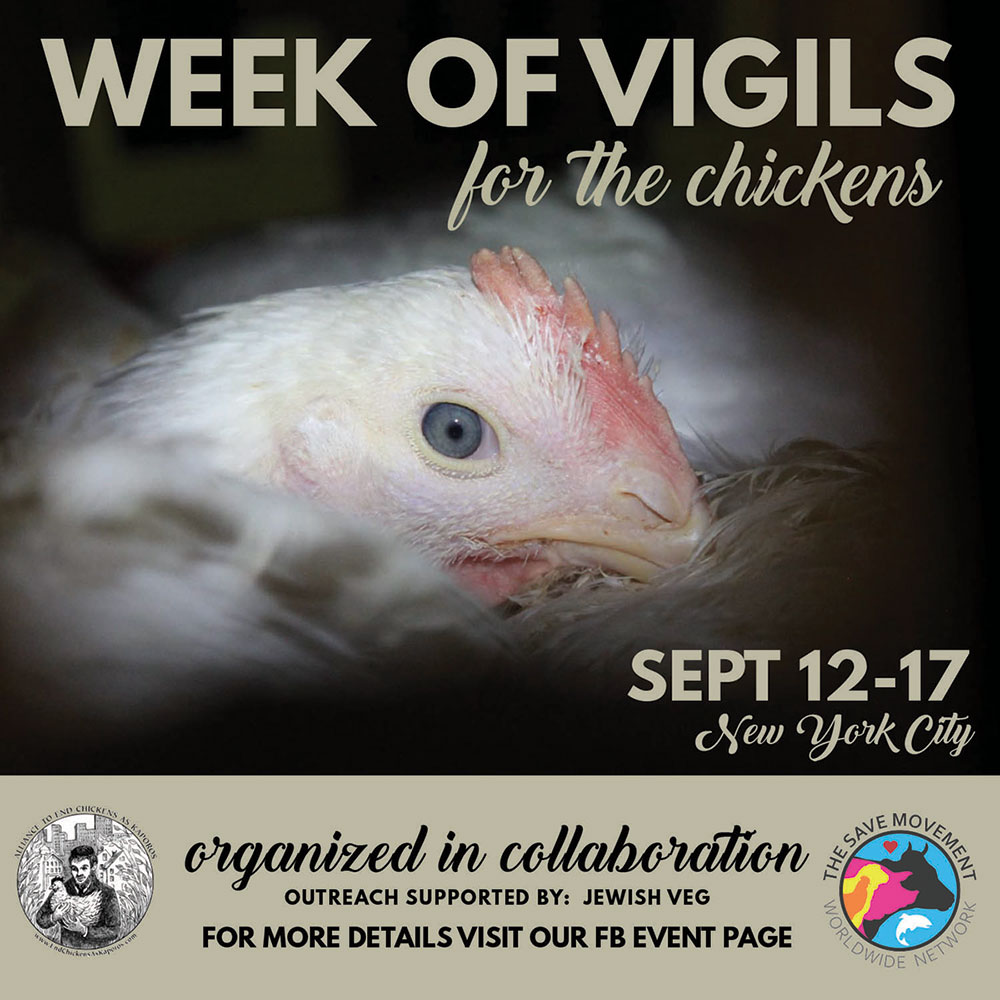 2018 NYC Week of Vigils for the Chickens