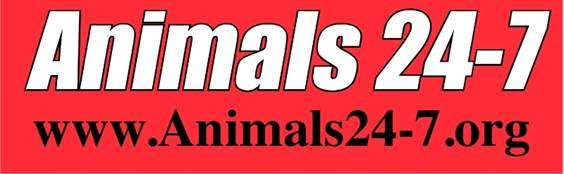 Animals 24-7 logo