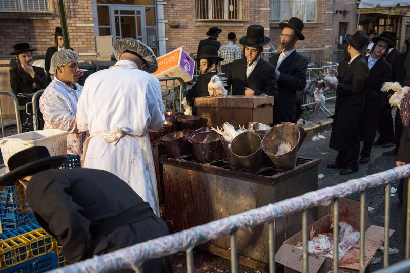 Jews are seen here on Flushing Avenue near Bedford Avenue performing the Atonement Ritual of Kapparot in Brooklyn.