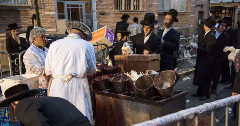 Jews are seen here on Flushing Avenue                        near Bedford Avenue performing the Atonement Ritual of Kapparot in Brooklyn. Theodore Parisienne/New York Daily News