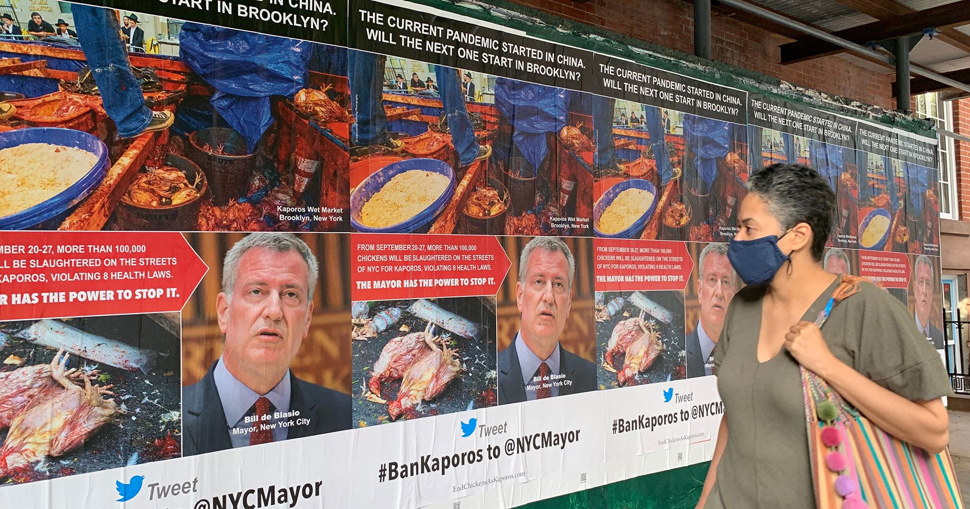 Ban Kaporos posters along walkway